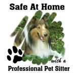 Safe at Home - Professional Pet Sitter